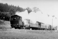 Einst ..... Lokführer Alfons Baur vermutlich im Jahr 1961 mit Lok WN 12 und den Personenwagen WN 2, WN 6, Packwagen 24 und zwei Brünigwagen im Egautal unterwegs in Richtung Neresheim