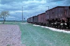 Der typische Dampfzug der Härtsfeldbahn war ein PmG, hier 1956 bei Zöschlingsweiler