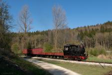 Dampflok-Probefahrt im Frühling