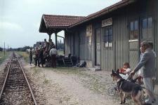 15 Pfadfinder und andere Fahrgäste warten im Sommer 1971 am Bahnhof Lauingen auf den Zug in Richtung Neresheim.